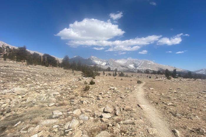 Day 59 - approach to Forester Pass